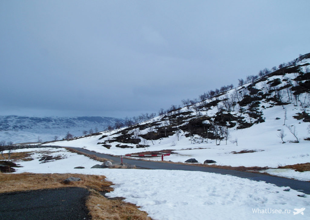Хардангервидда в Норвегии