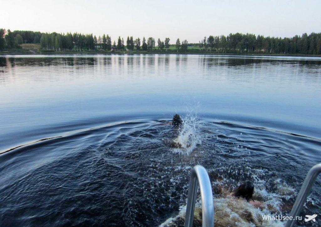 Настоящая финская сауна в Тампере