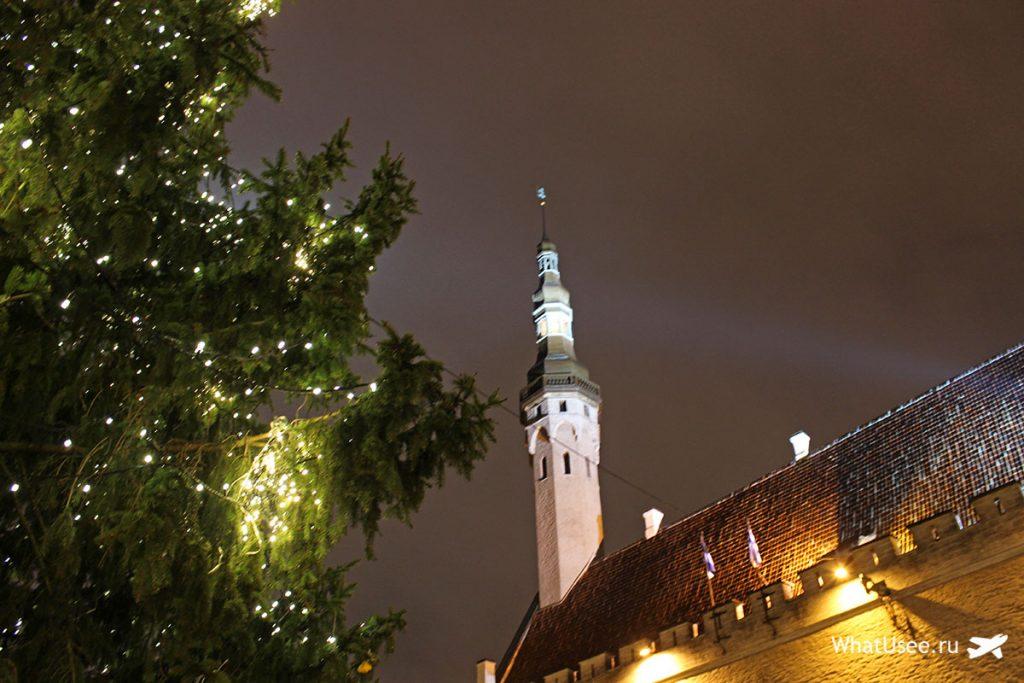 Ратушная площадь в Таллине зимой