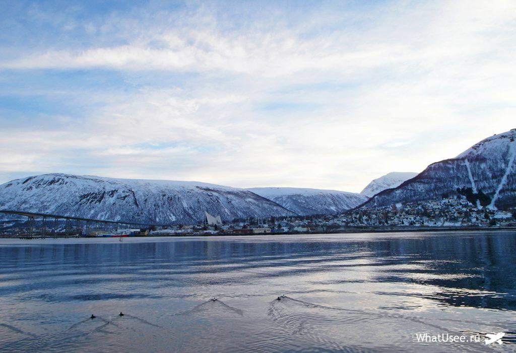 Самостоятельная поездка в Тромсё зимой