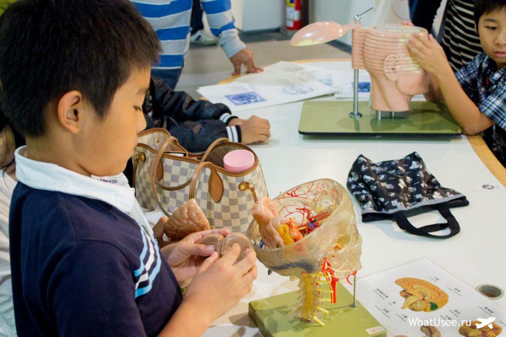 Дети в музее Мираикан