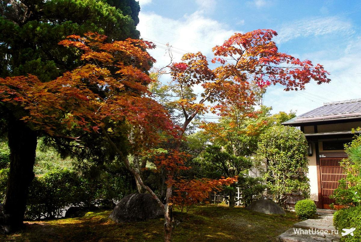 Японский традиционный сад у рёкана