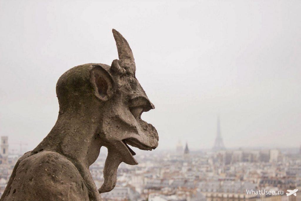 Собор Парижской Богоматери, смотровая площадка