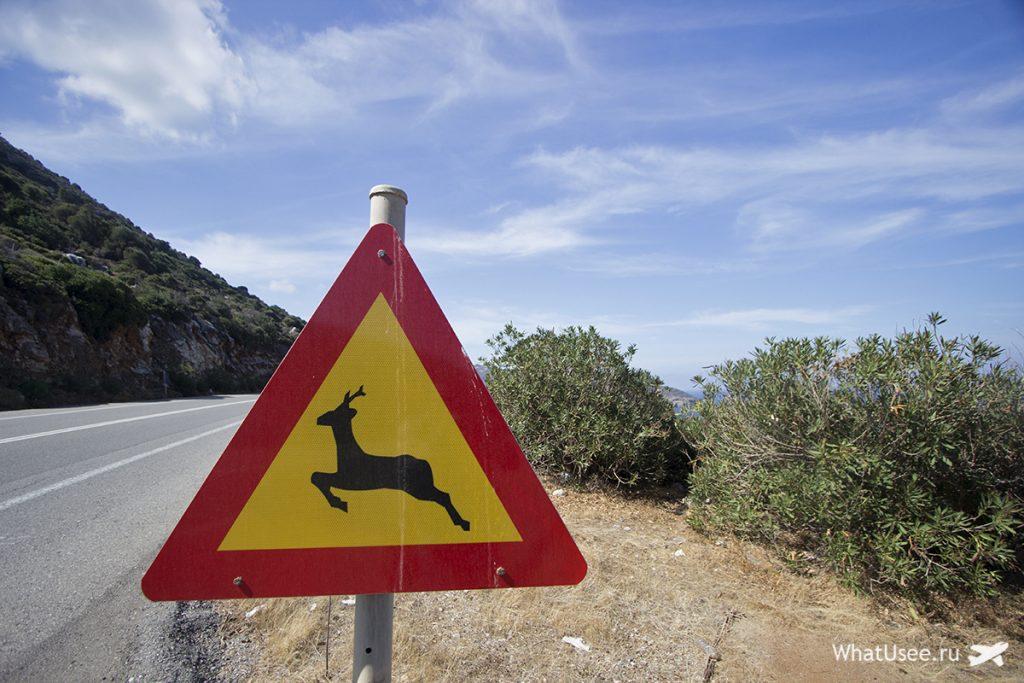 Путешествие на машине по Криту в октябре