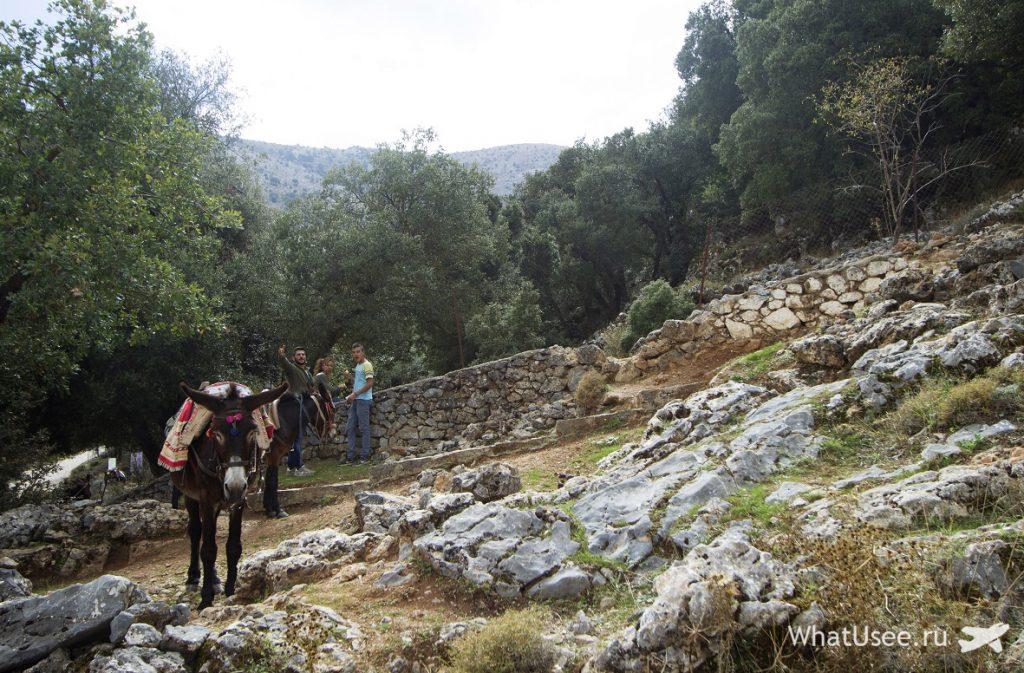 Крит октябрь