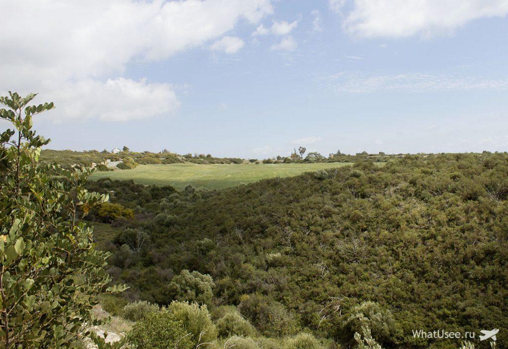 Дорога к камню Афродиты