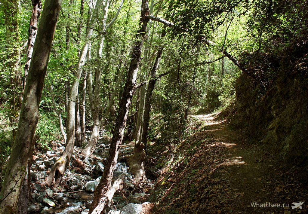 Тропа к водопаду в Троодосе