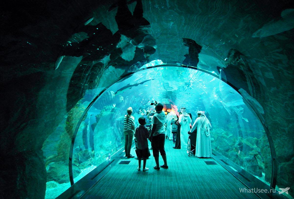В торговом центре Dubai Mall