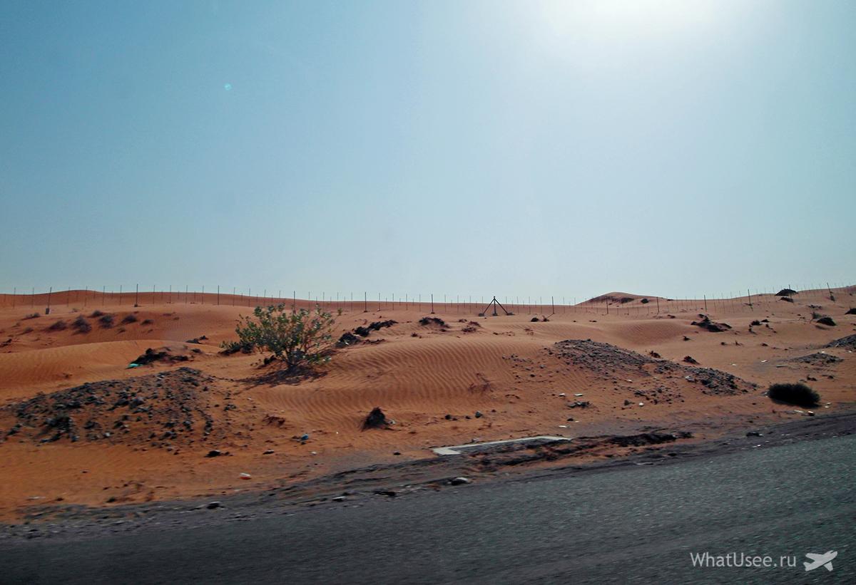 Поездка из Дубая в Оман на полуостров Мусандам