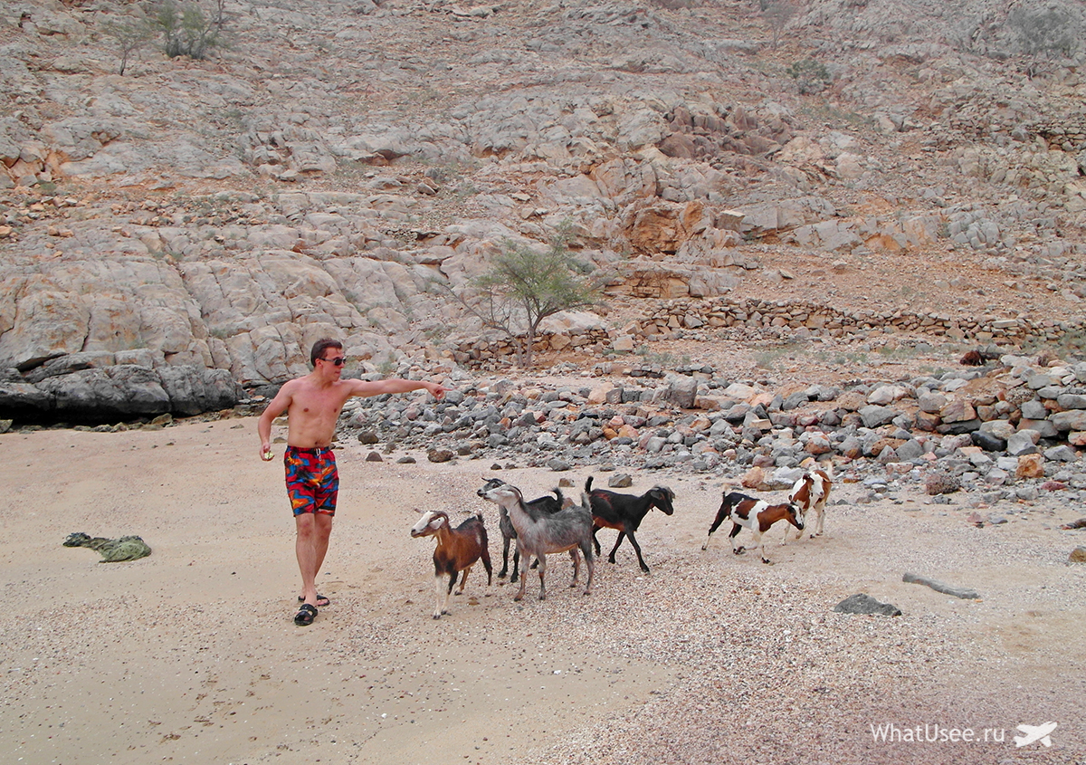 Пляжи в Омане