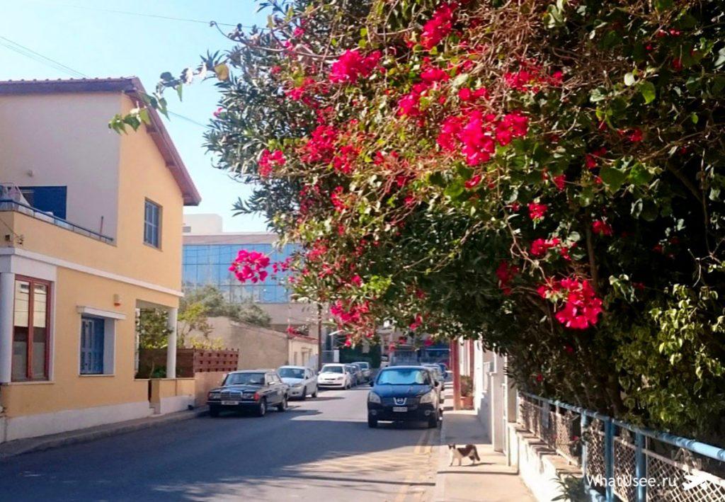 Переезд на Кипр на своём опыте