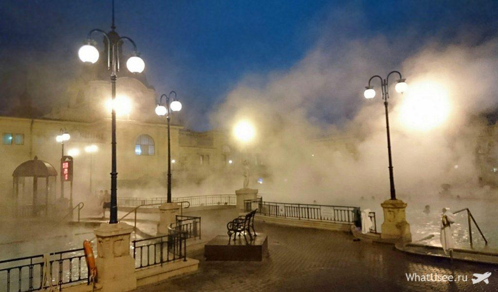 Фото купален Сечени в Будапеште зимой