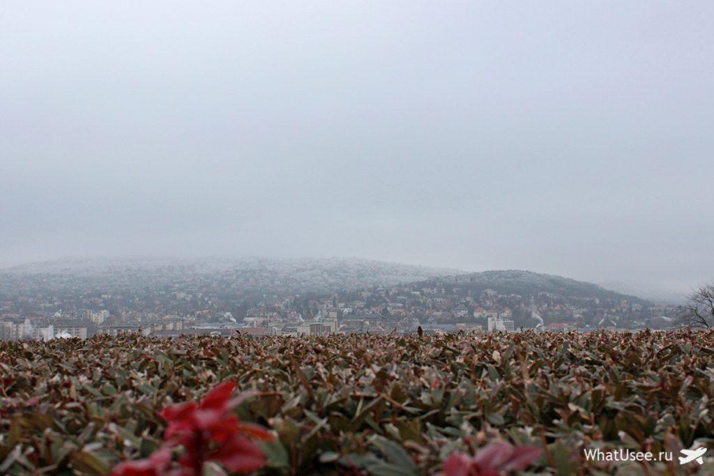 Прогулка по Будапешту в декабре