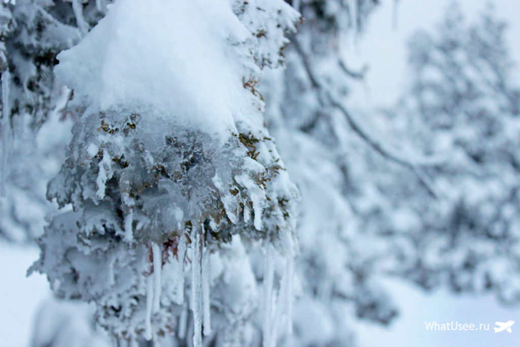 Троодос в снегу