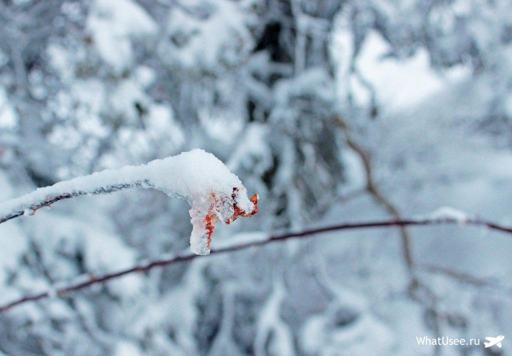 Выпал снег на Кипре