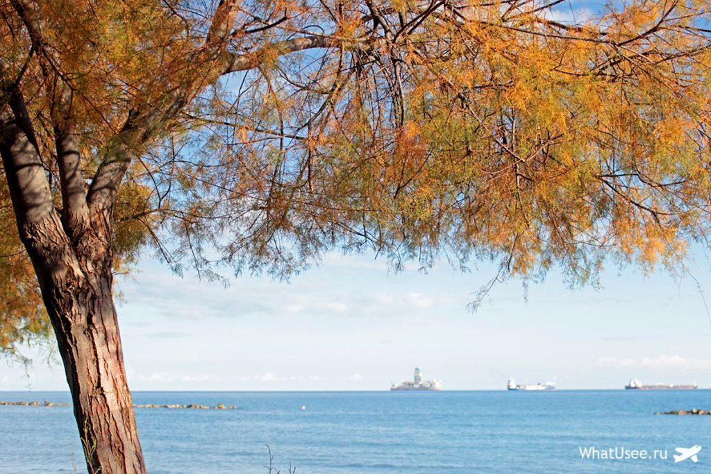 Что делать на Кипре зимой