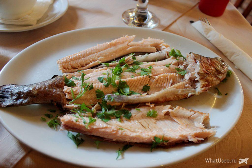 Рыба и морепродуты на Кипре