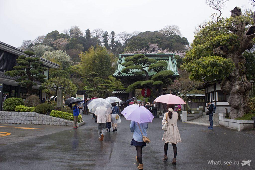 Посещение храма Хаседера в Камакуре