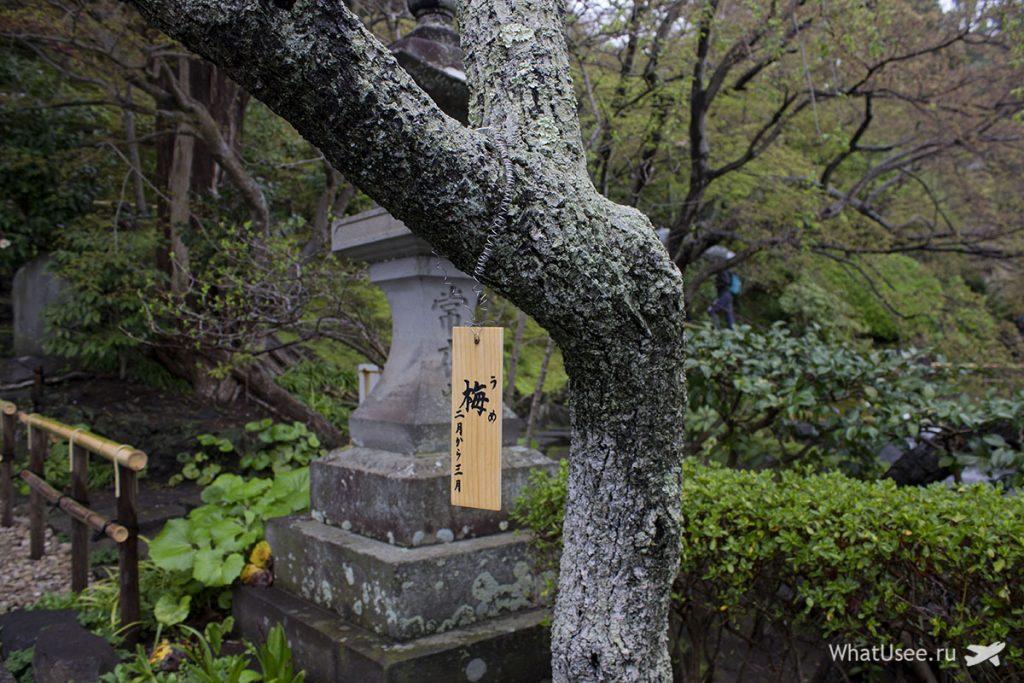 Посещение Камакуры в Японии