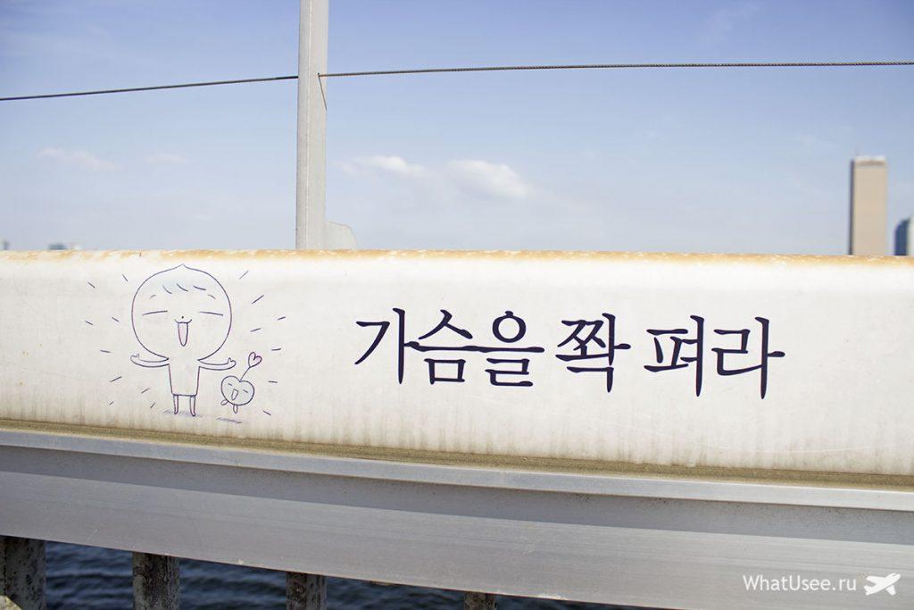 Мост жизни в Сеуле