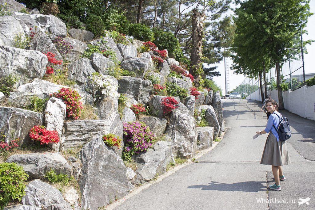 Деревня Букчон