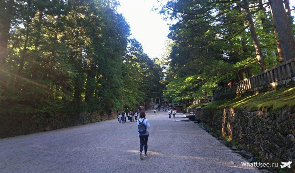 Дорога к храмам в Никко в Японии