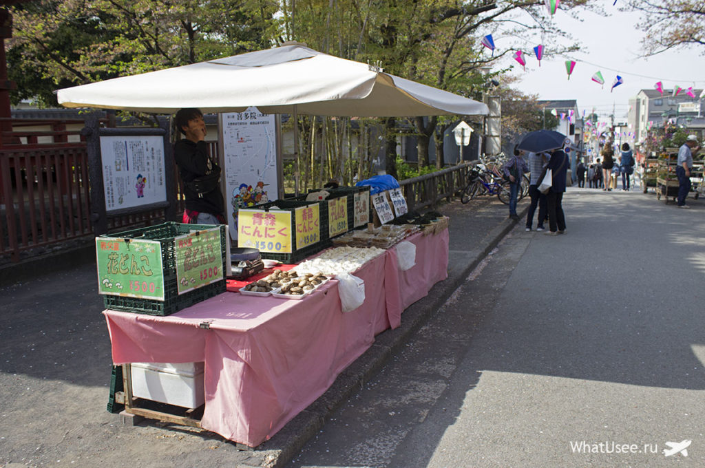 Город Кавагоэ в Японии
