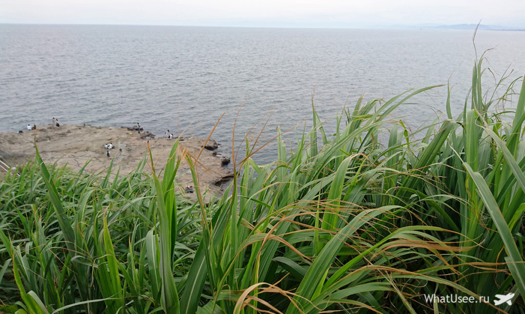 На острове Эносима в Японии