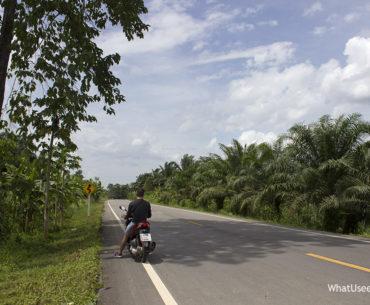 Национальный парк Као Сок Таиланд
