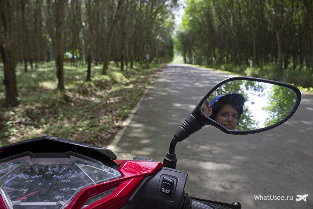 Дорога в национальный парк Као Сок на скутере
