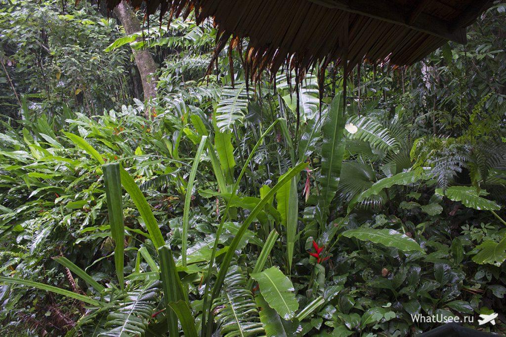 Ночь в джунглях в Као Соке