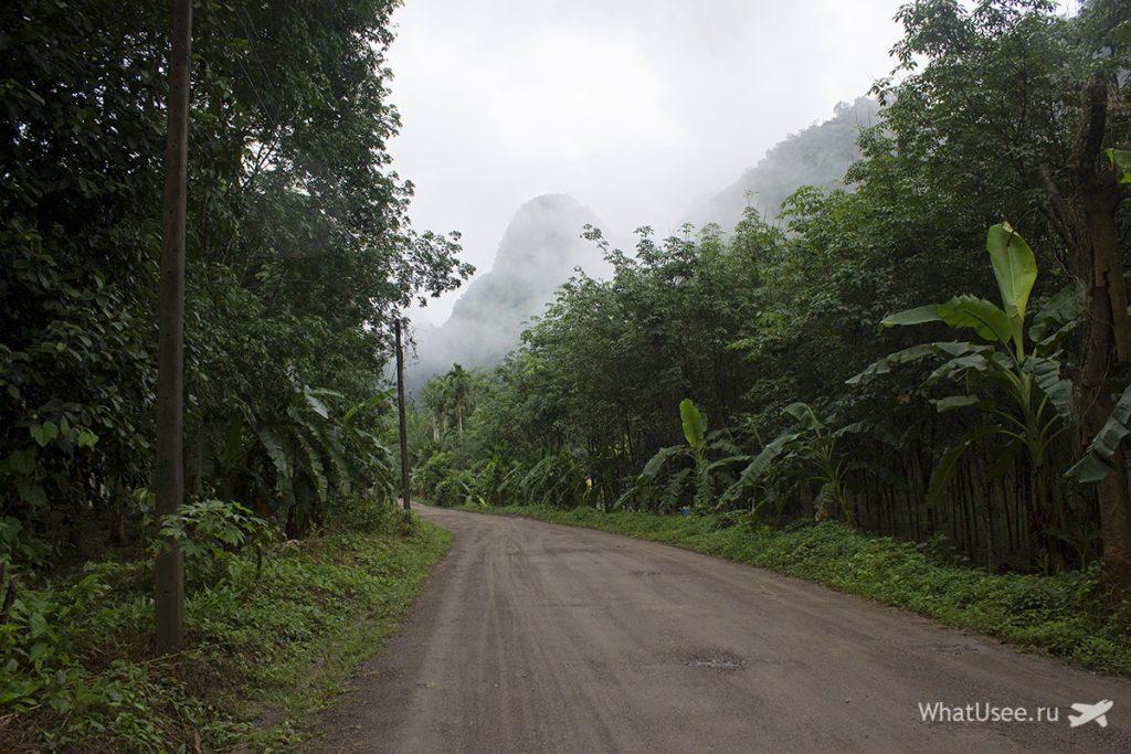 Поездка в национальный парк Као Сок в Таиланде