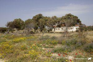 Маршрут по Кипру и Пафос