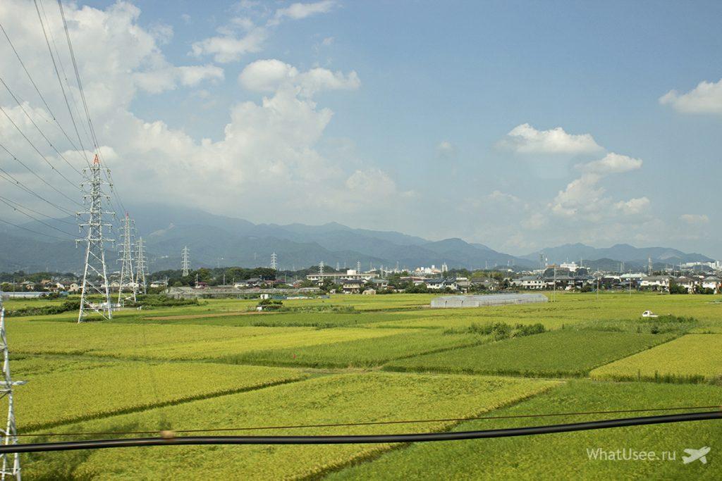 Поездка на синкансене в Киото