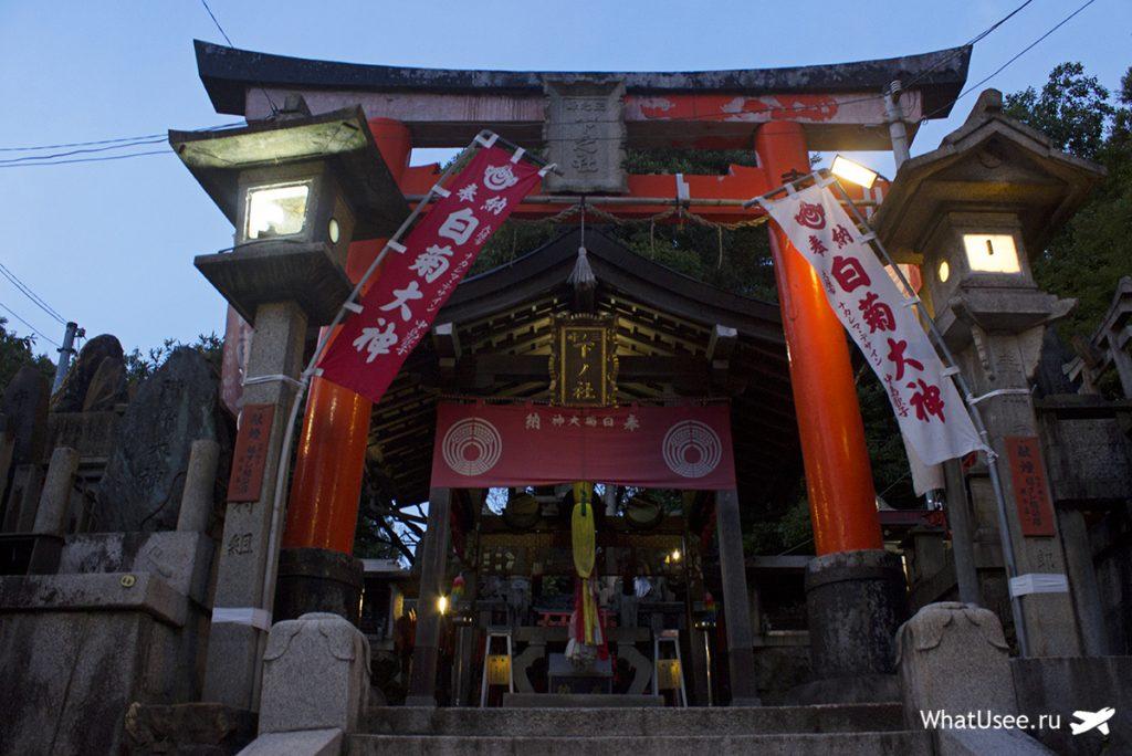 Тории в святилище Фусими Инари