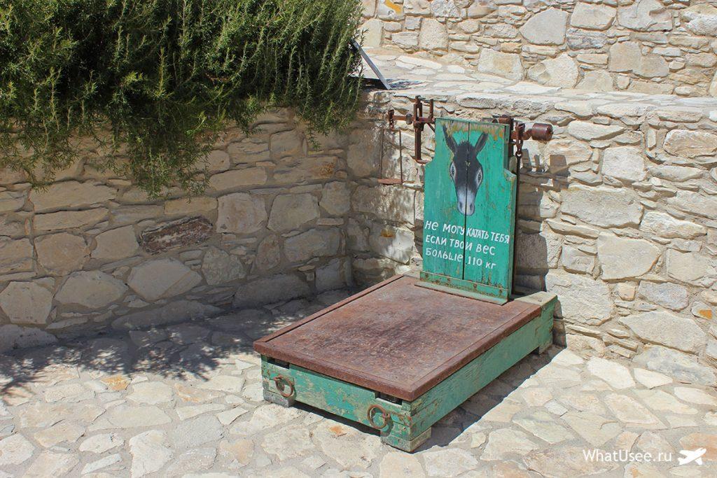 Отзыв об ослиной ферме на Кипре