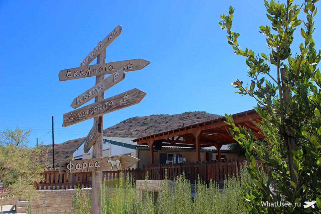 Ослиная ферма в Скарину на Кипре