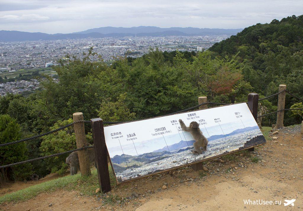 Гора Иватаяма в Арасияме