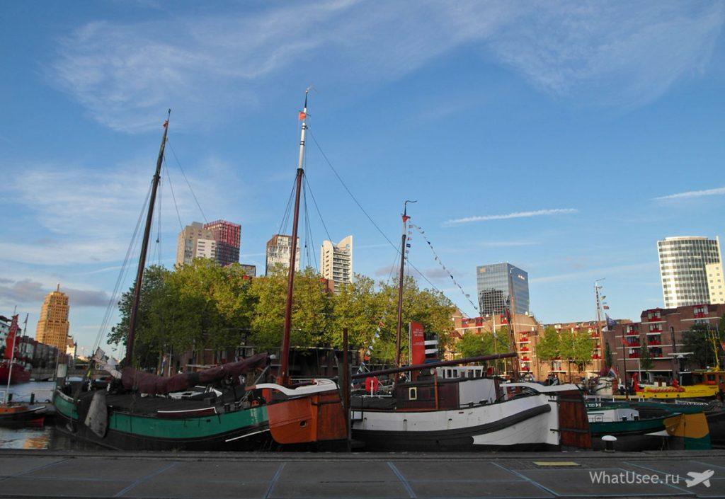 Отзыв о поездке в Роттердам