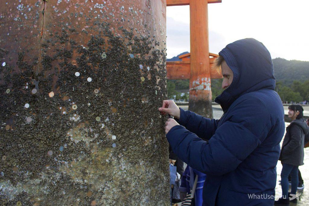 Тории на острове Ицукусима в Японии