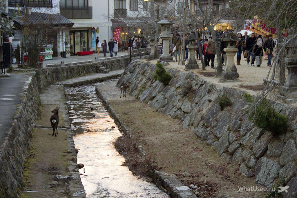 Поездка на остров Миядзима из Хиросимы