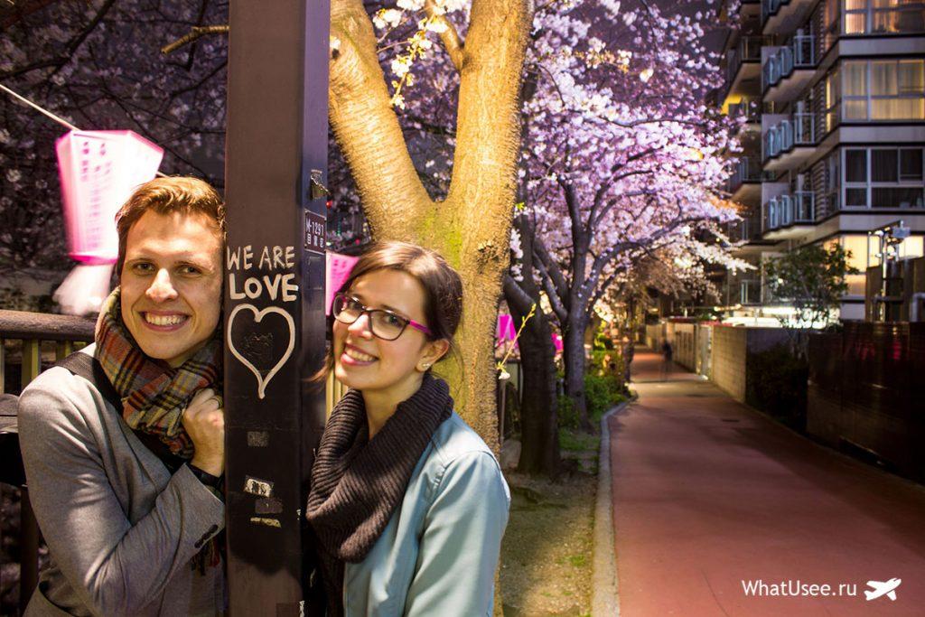 Красивое цветение сакуры в Токио