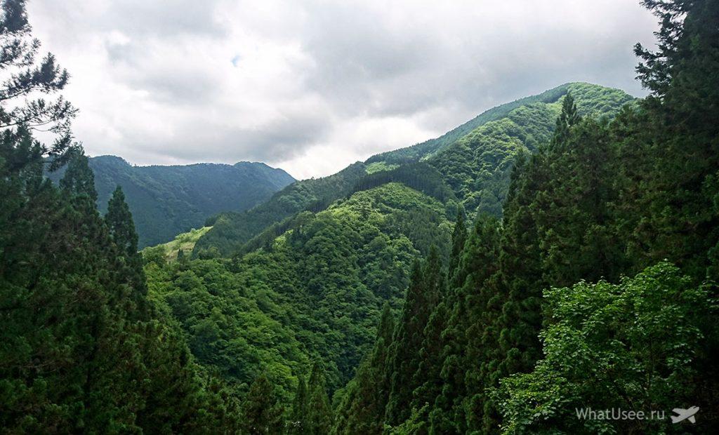Плюсы проживания в Японии