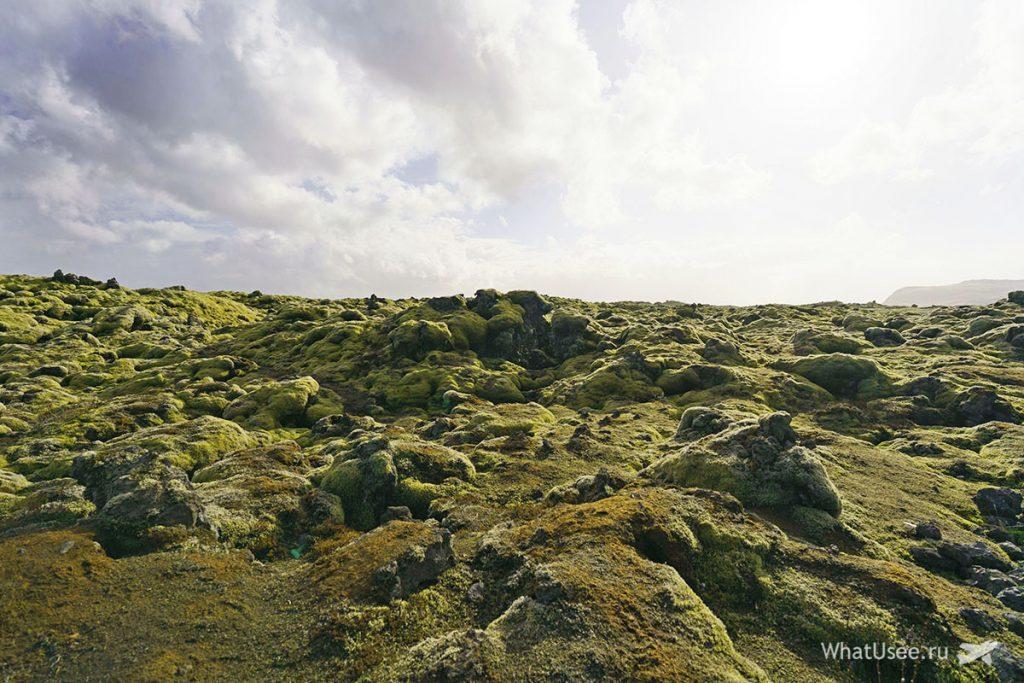 Лавовые поля в Исландии