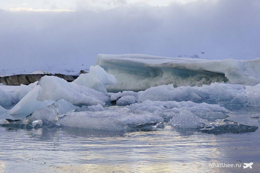 Айсберги в Ледниковой Лагуне