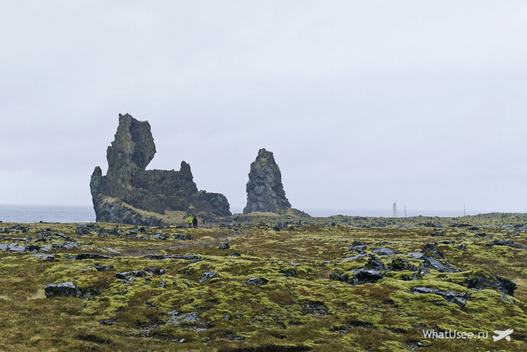Птичьи скалы на полуострове Снайфедльснес
