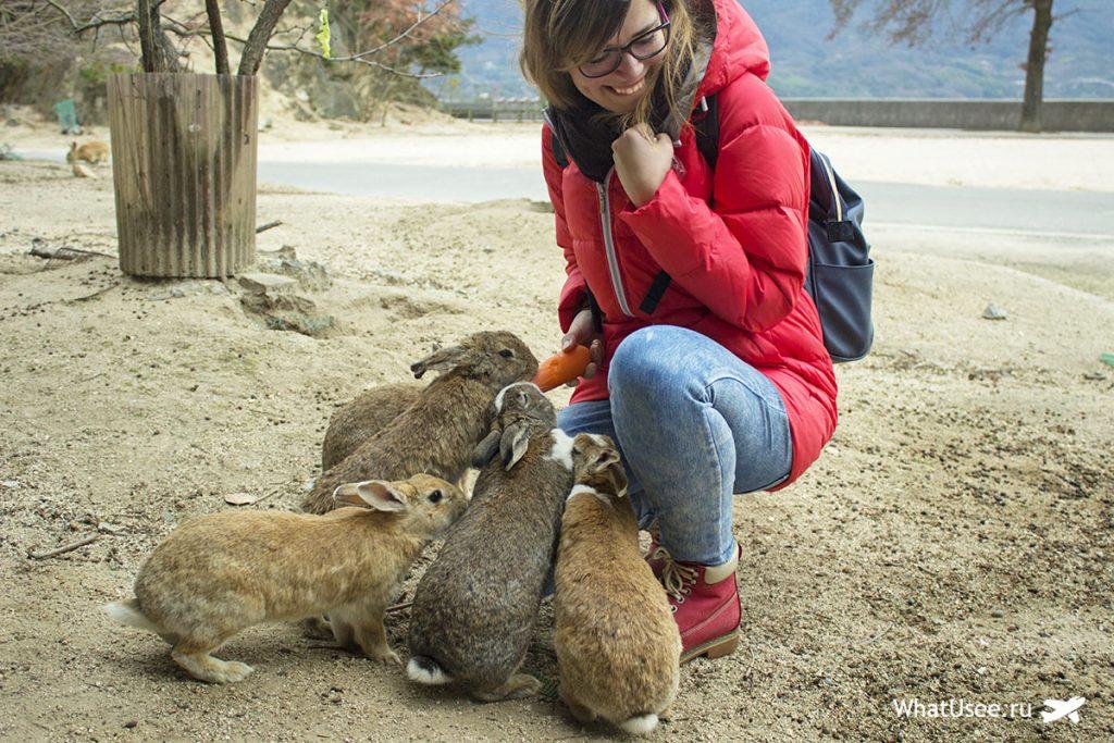 Япония: кроличий остров Окуносима