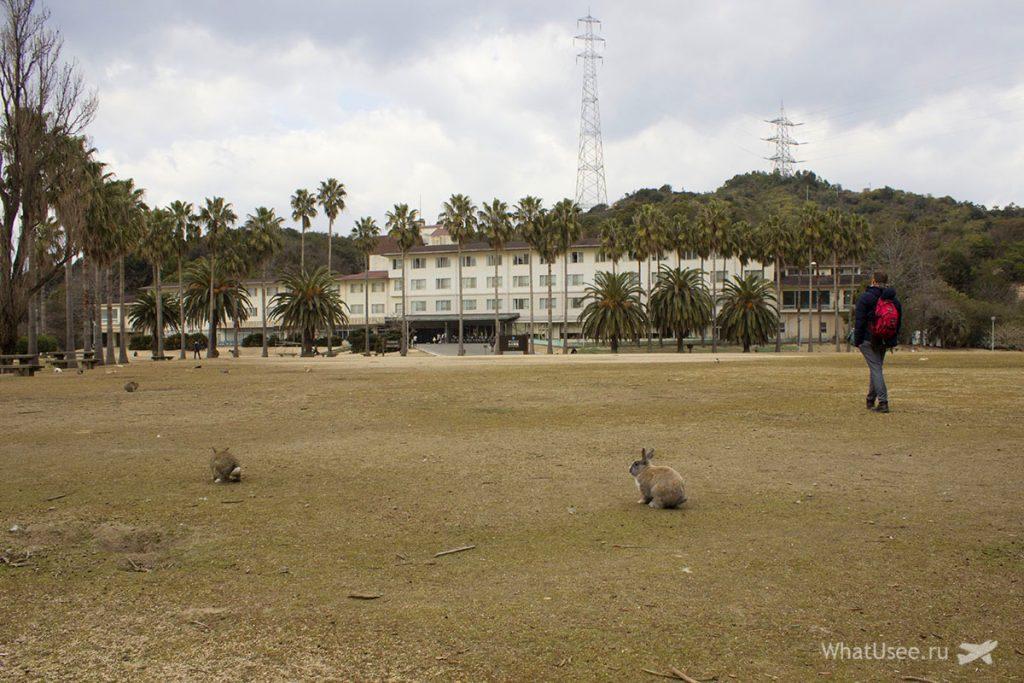 Кроличий остров Окуносима