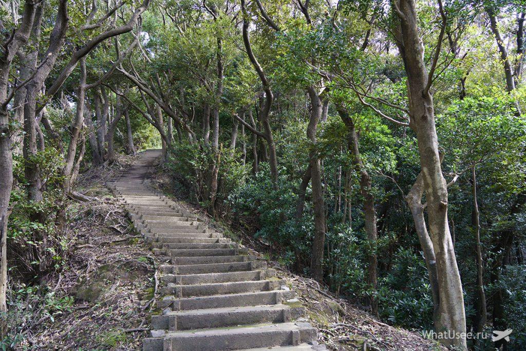Гора Нокогирияма Япония