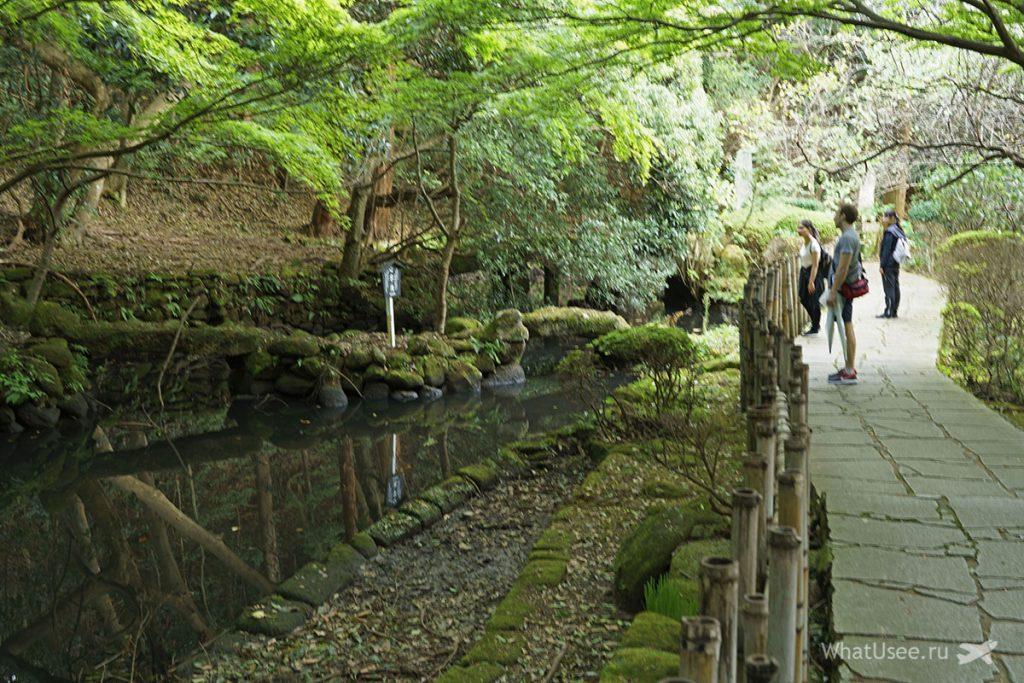 Отзыв о посещении горы Нокогирияма в Токио